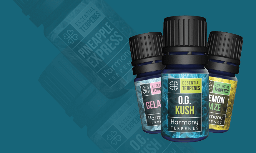 CBD Essential Oils at CBD Store Ireland